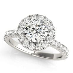 Round Moissanite Side Stones Engagement Ring - 2.75tcw - 3.65tcw