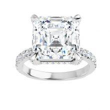 Asscher Moissanite Forever One Hidden Halo Engagement Ring